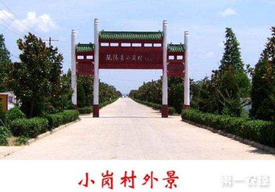"""""""中国农村改革第一村""""首次分红"""
