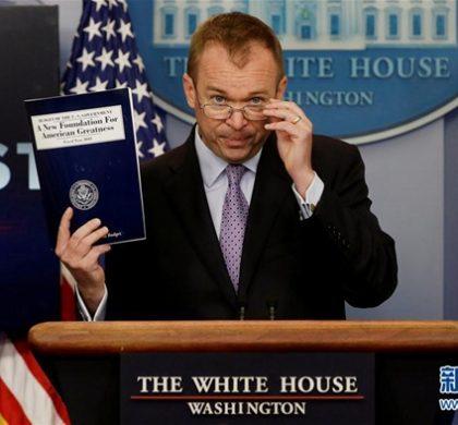 """美预算报告""""有枪炮没黄油""""引发非议"""
