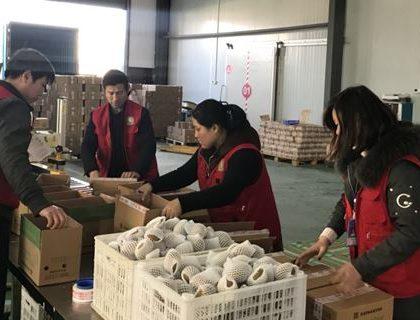 """河南2017年对""""一带一路""""沿线国家进出口超900亿元"""
