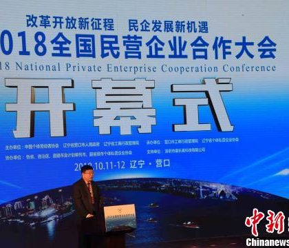 """中国民营企业借力政策""""东风""""加速转型步伐"""